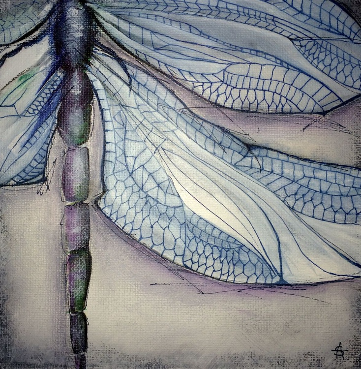 Dragonfly Trilogy - Image 0