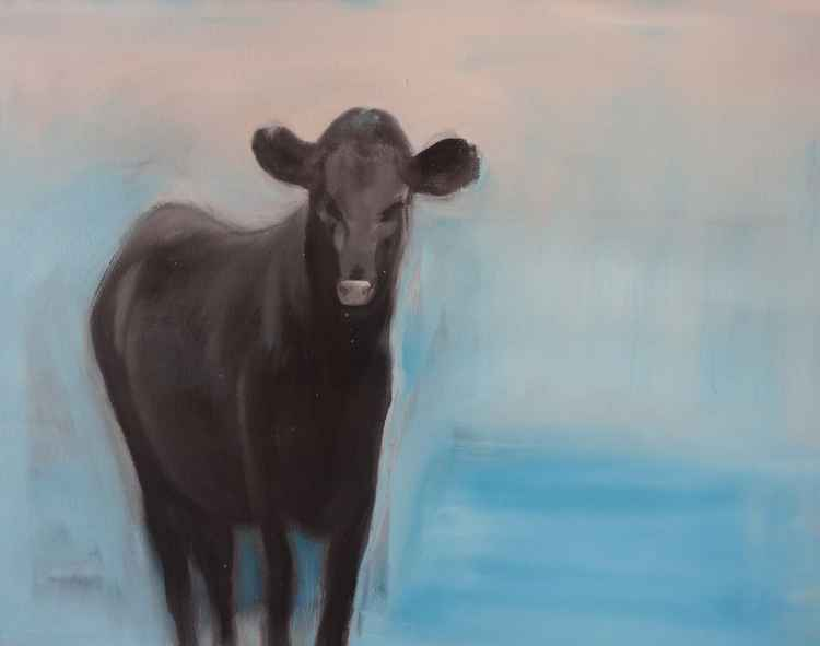 Lonely cow -