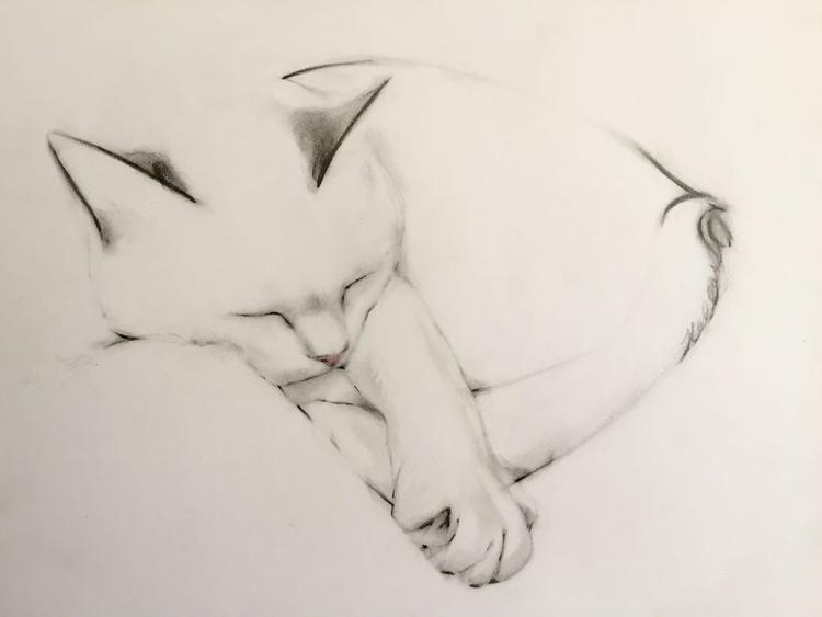 Drawing of Sleeping Cat - Image 0