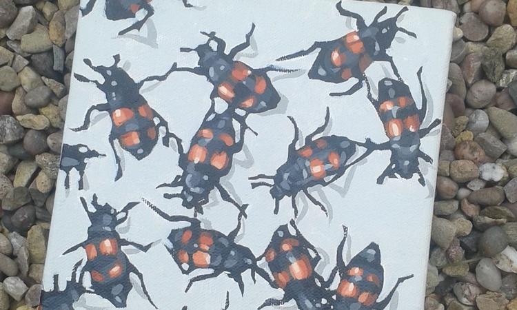 Beetles - Image 0