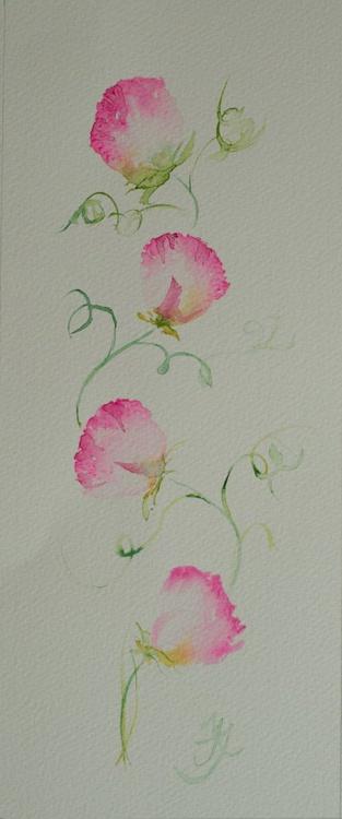 Pink Sweet Peas - Image 0