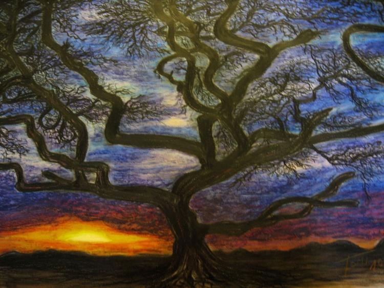 desert tree - Image 0