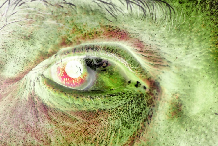 Eyes | III (Limited Edition of 50 | Small) - Image 0