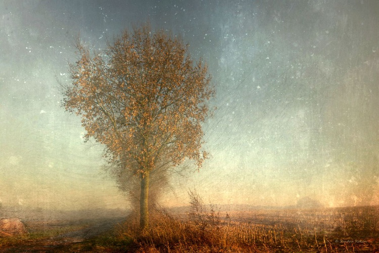 Gentle Touch of Autumn - Image 0