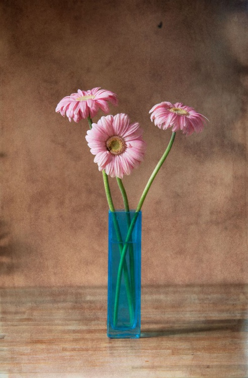 Three flowers (edition of 30) - Image 0