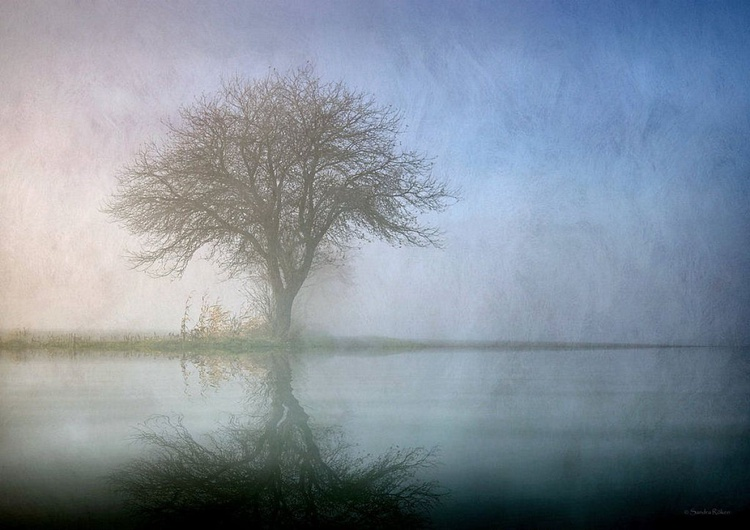 Alone with Nature - Image 0