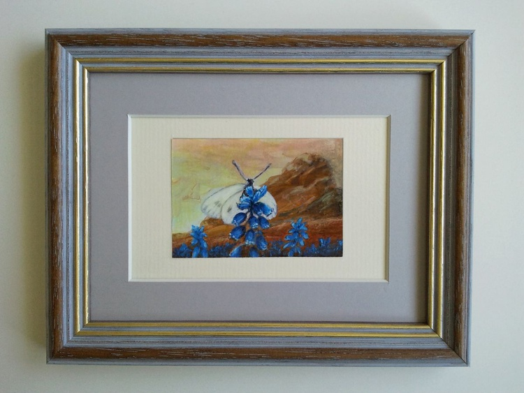 Scottish Butterfly and Bluebells, a miniature painting - Image 0