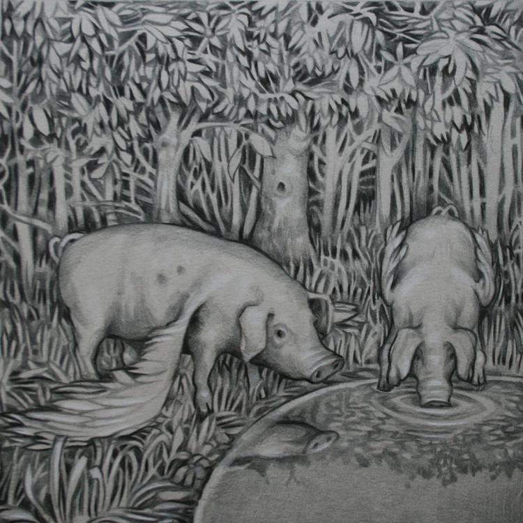 A watering hole in a wood - Image 0