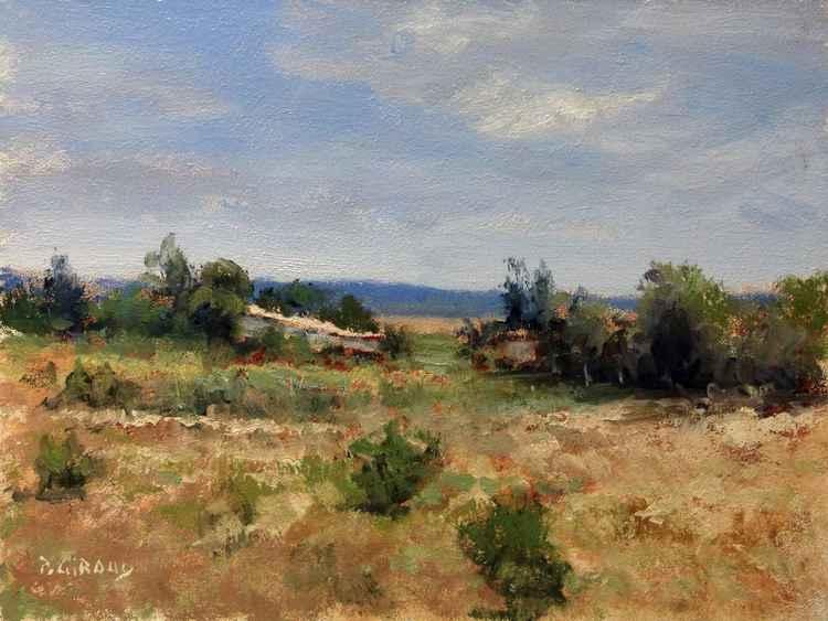 Mas Provençal (Forcalquier) -