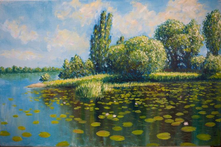 Verbny (willow) island in Kiev - Image 0