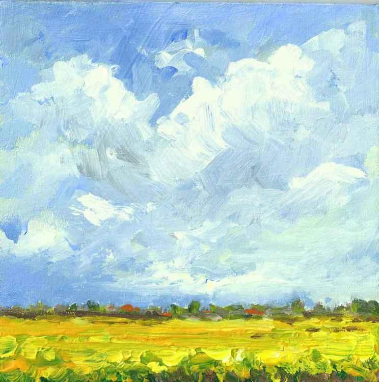 Coleseedfields in the polder II -
