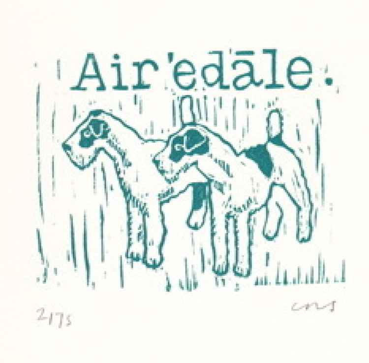 Airedale Terriers -