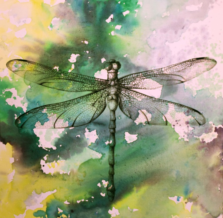 Hawker Dragonfly - Image 0