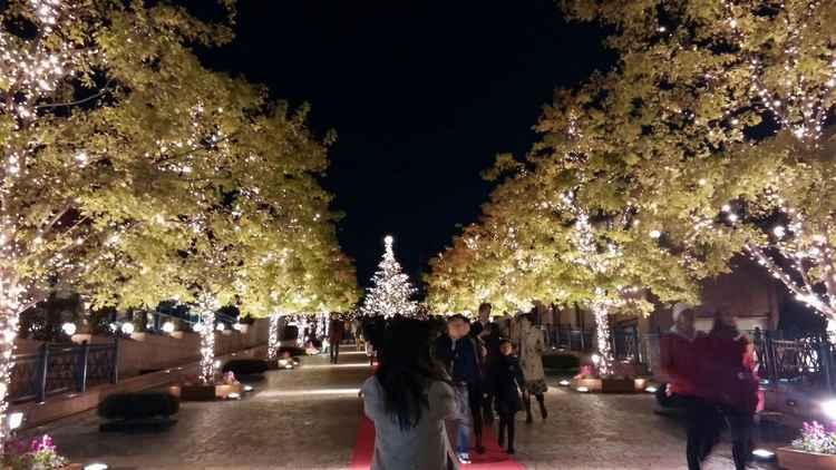 Christmas Avenue -