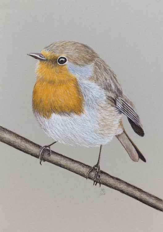 "Original pastel drawing ""European robin"" -"