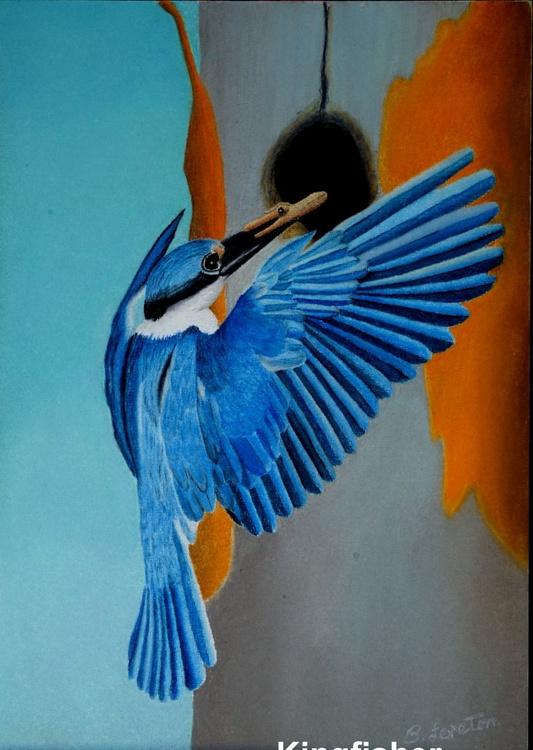 Beautiful Kingfisher - Image 0