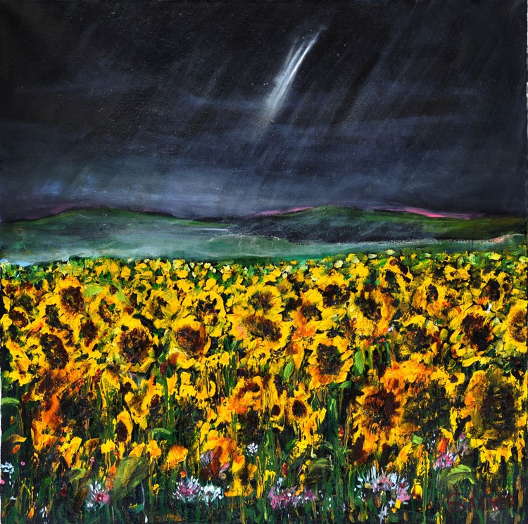 Lit up by a lightning. Sunflowers. - Image 0