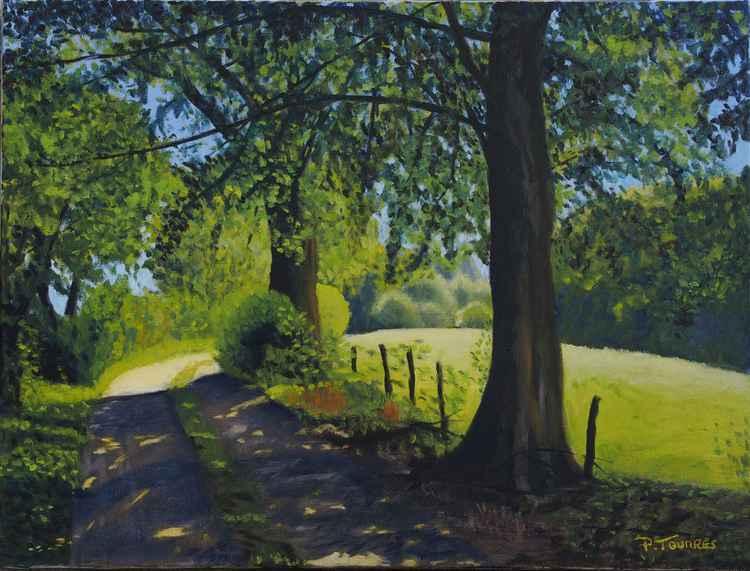 Chemin en Creuse - Lane in Creuse -