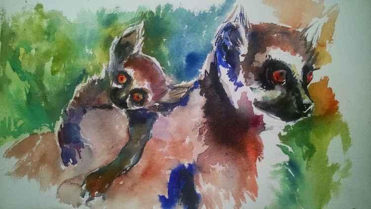 Lemur Love -