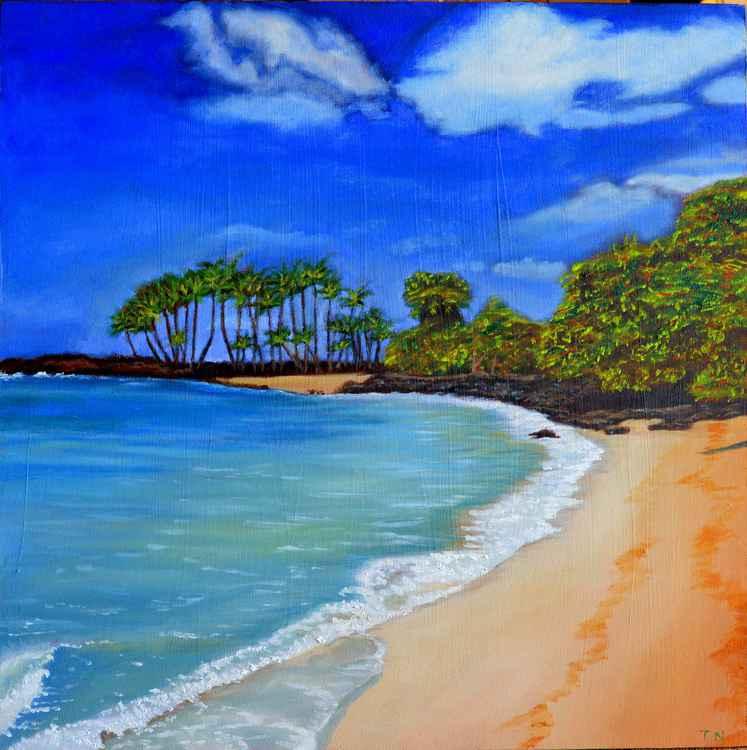 Calm - coastal landscape - hawaii -