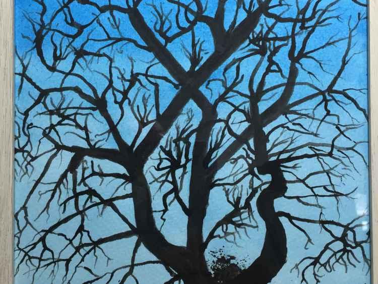 Dusky tree