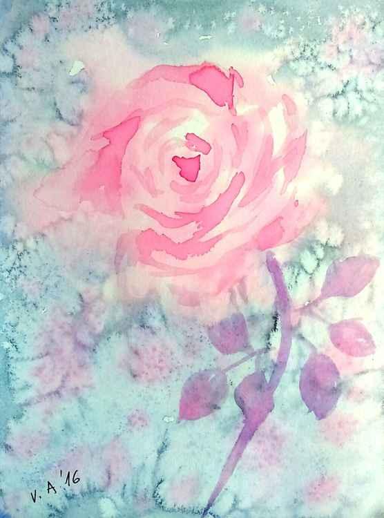 Pink rose -
