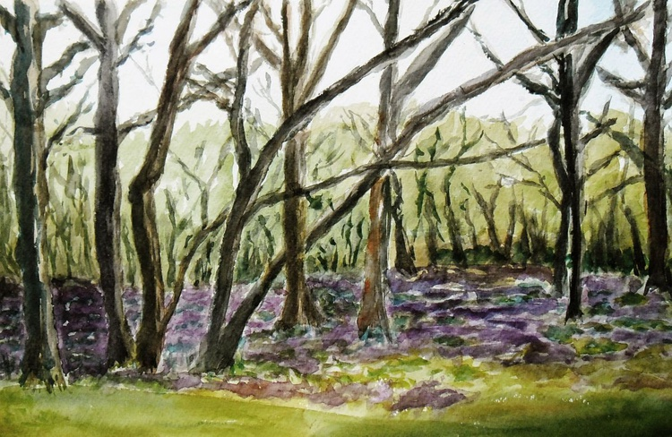 Bluebells at Poulton Woods, near Ashford, Kent. A large original watercolour painting. - Image 0