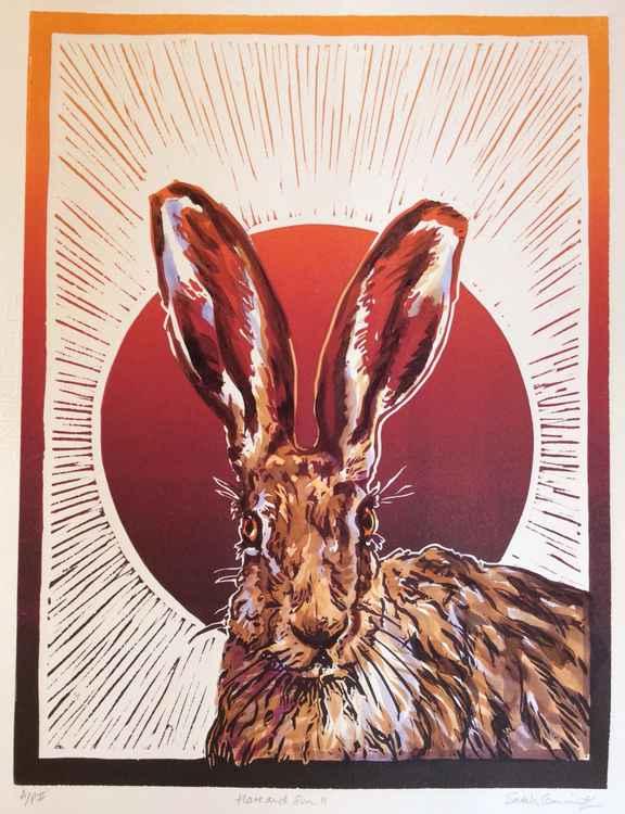 Hare &Sun 2 -