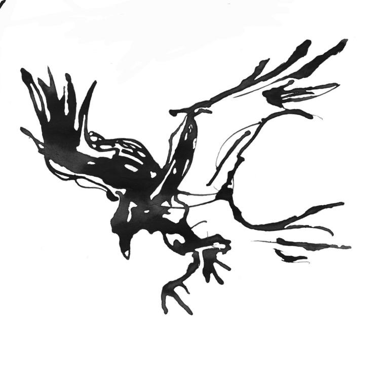 Raven landing - Image 0