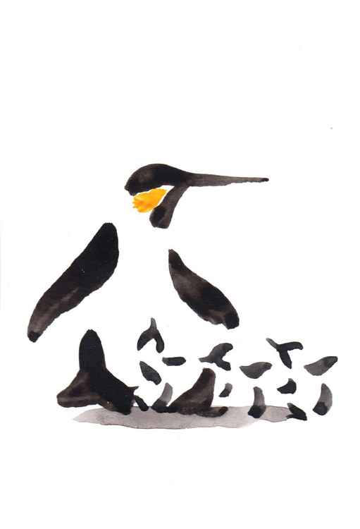 Penguin and three chicks 1015K -
