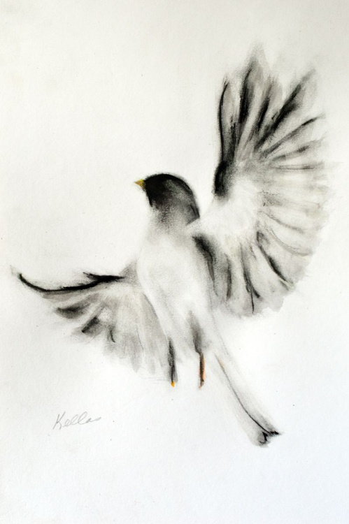 Proud Bird - Image 0