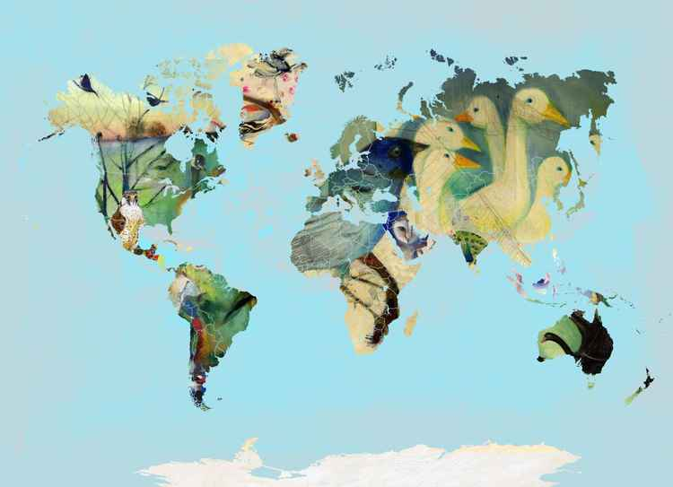 A bird world -