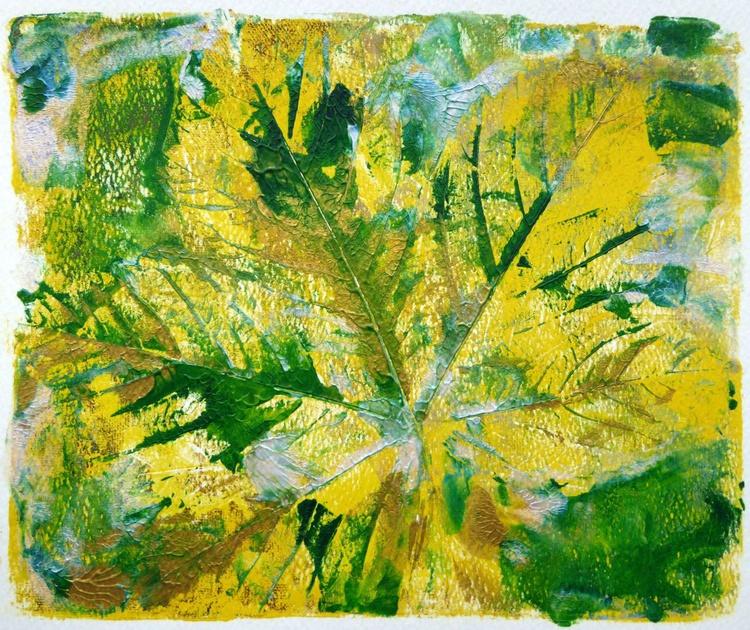 Sycamore tree leaf - Image 0