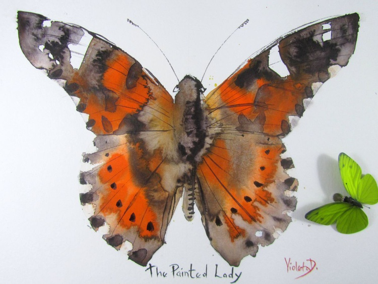 The Painted Lady (Pyrameis Cardui) - Image 0