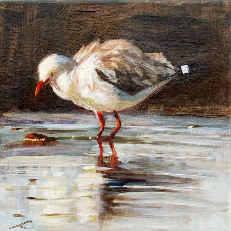 Jonathan Seagull -