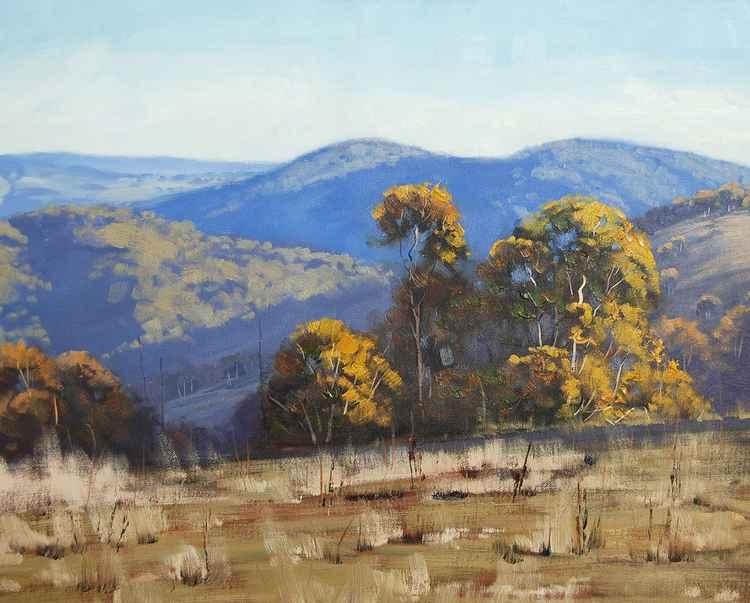 Australian Landscape -