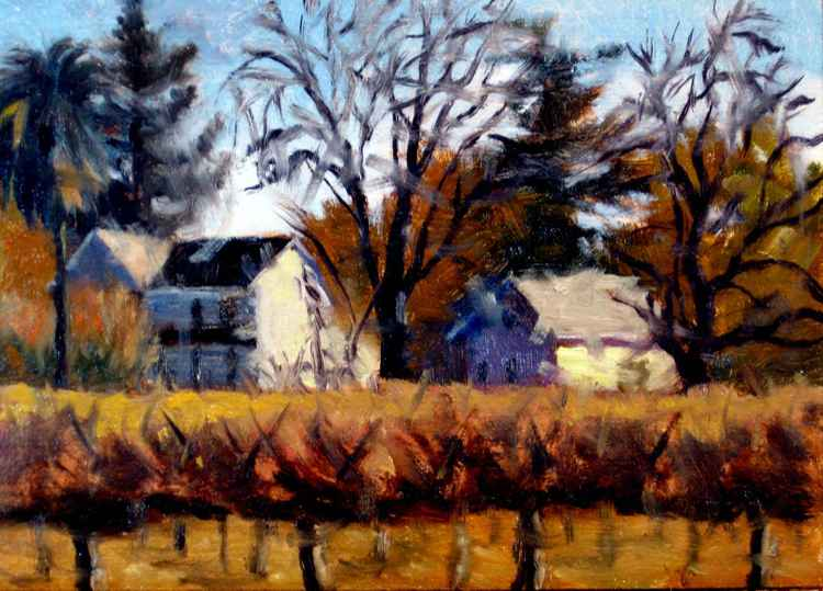 Winter Vineyards Fulton -
