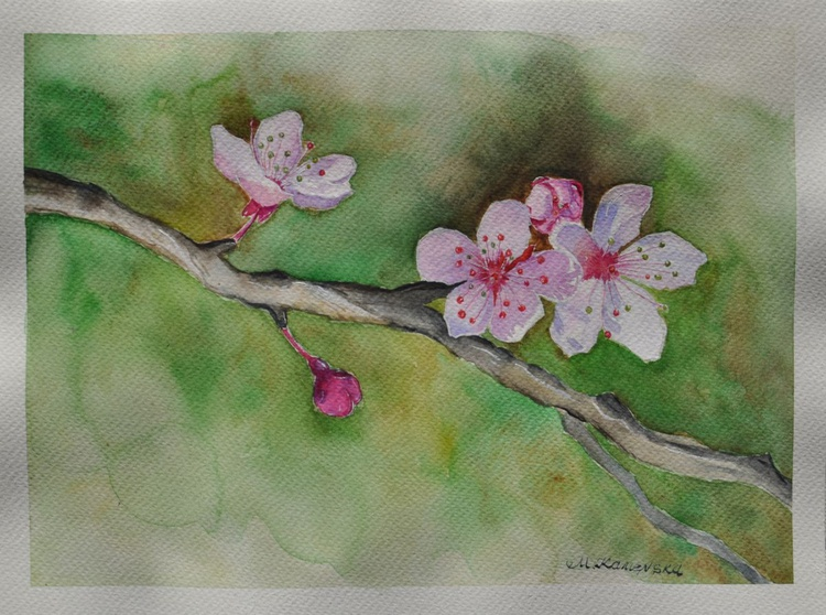 Original one of a kind watercolor artwork - Blooming tree branch on green background - Image 0