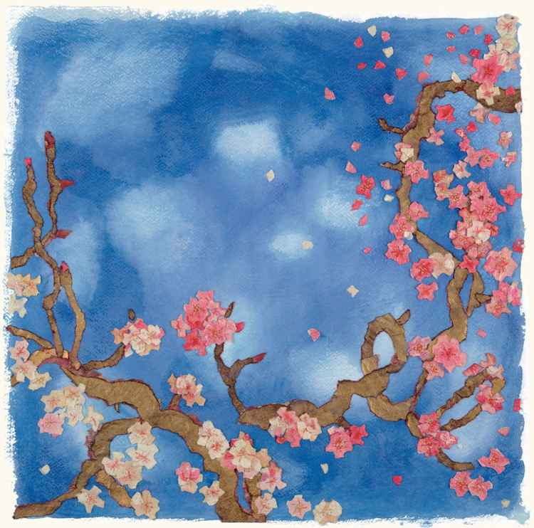 Blossom Branches and Blue Skies -