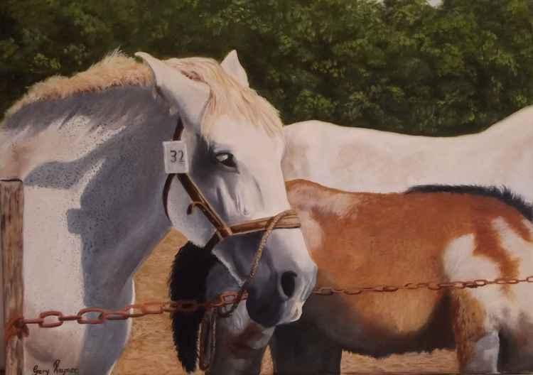 Horse Fair, Seau St Angel, Dordogne