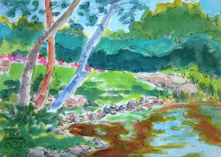 Shoreline, Marblehead Pond -