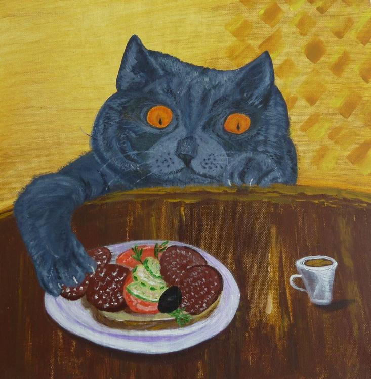 British blue cat, Food bandit - Image 0