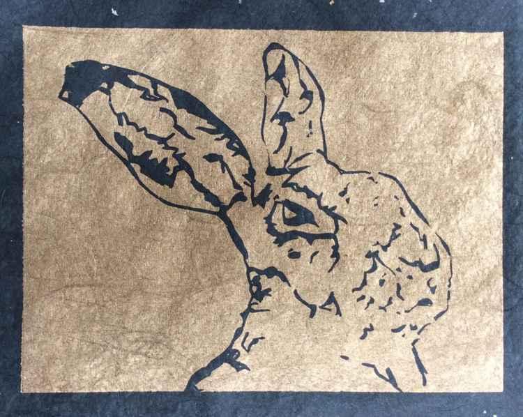 'Hare study 1' -