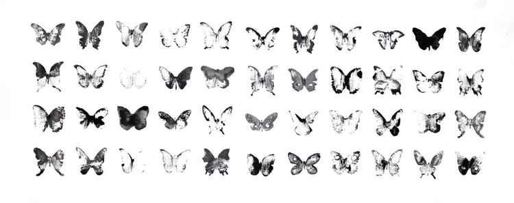Fourty-four butterflies 7530BW1 (75 x 30 cm) -