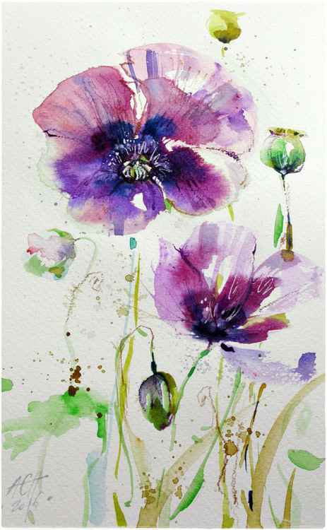 purple poppies watercolour signed