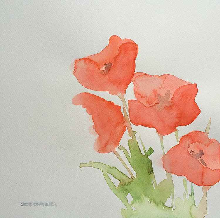A few poppies -