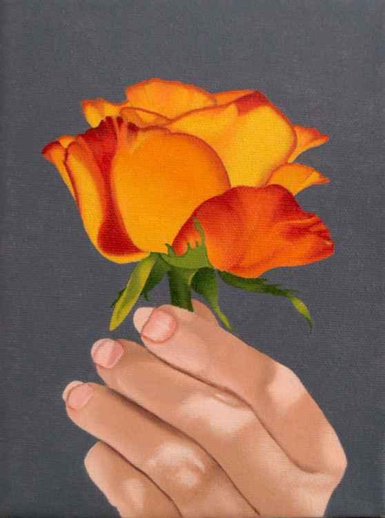 Brilliant Rose -