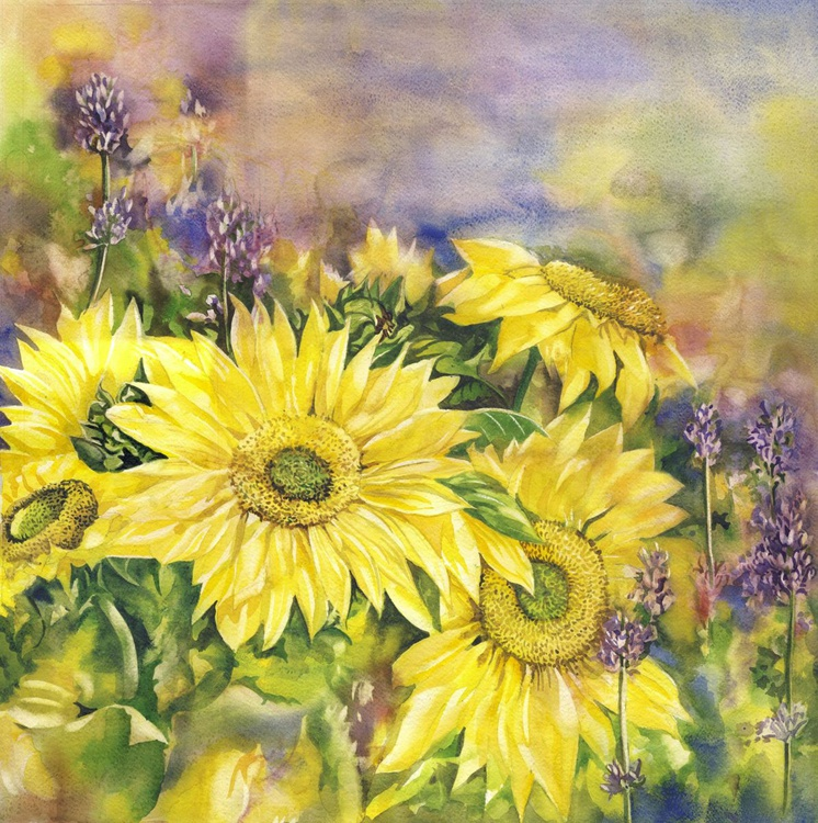 Sunflowers with lavender - Image 0