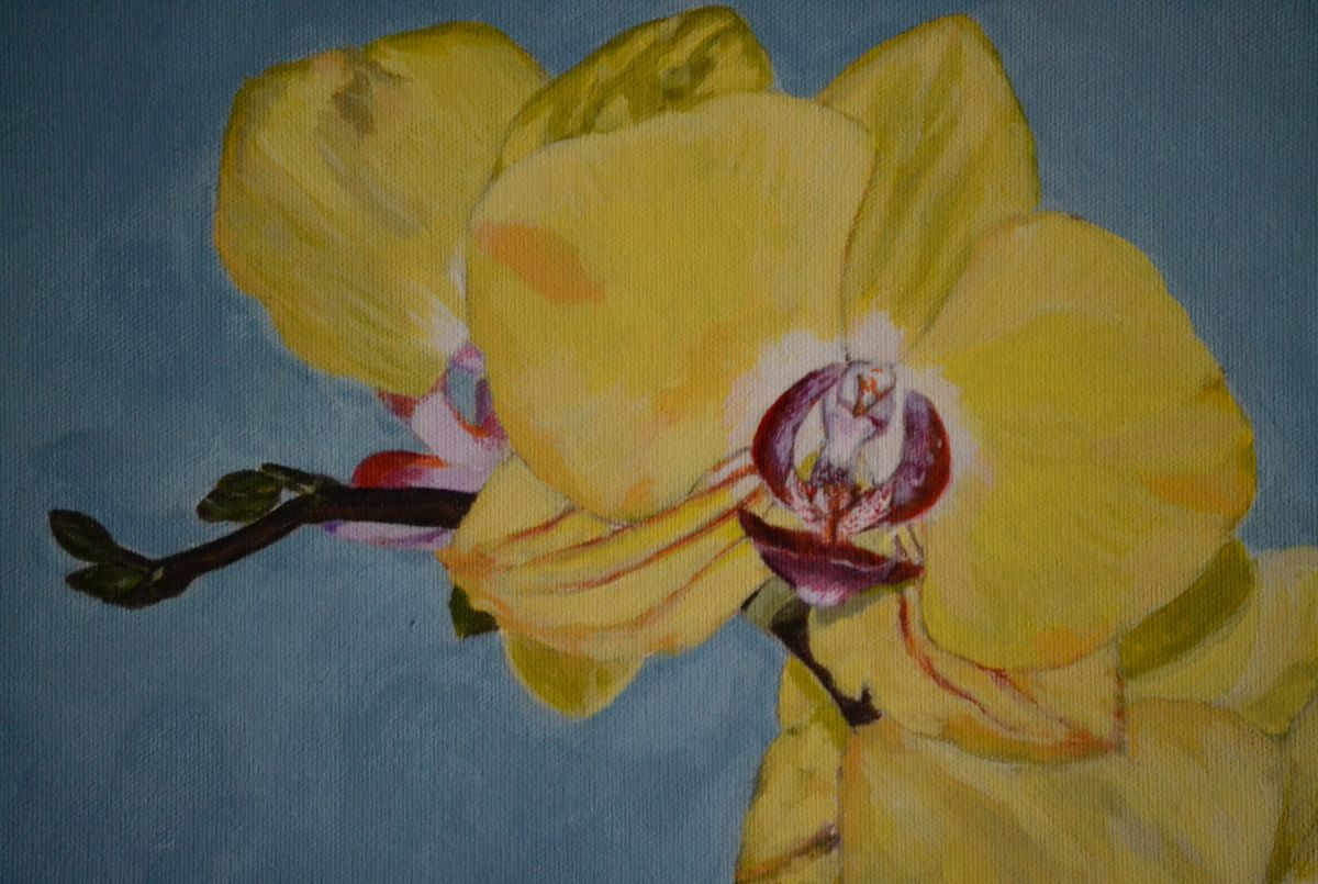 Yellow Orchid 2016 Acrylic Painting By Afekwo Artfinder