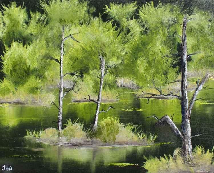 Serenity Pond -